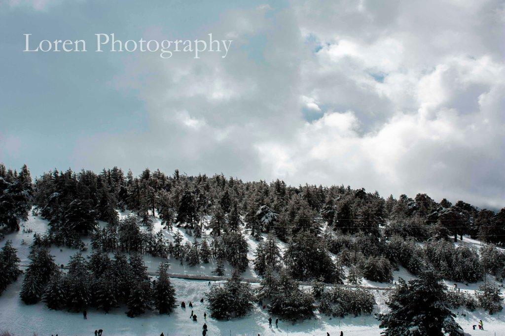 Navacerrada paisaje Febrero2015