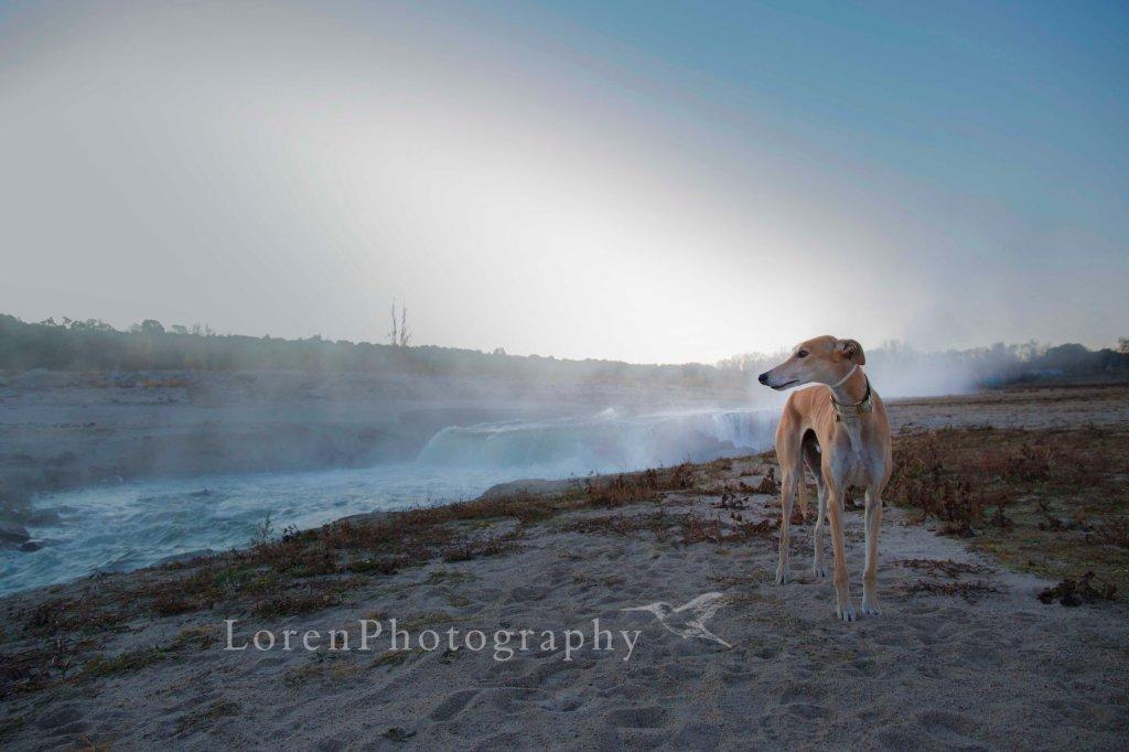 AmaneceConLeo 5-12-15 -  LorenPhotography_Firmada